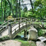 Ładny ,a także estetyczny ogród to zasługa wielu godzin spędzonych  w jego zaciszu w trakcie pielegnacji.